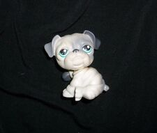 446 Littlest Pet Shop English Bulldog Gray Puppy Dog Teal Eyes Lps 2007 Hasbro