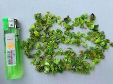 Batch 50-100g Natural Autunite Powder Crushed material Crystal Rare Mineral