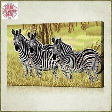 Prairie Zebra Vintage paint by number kit 50cm x 80cm Diy Oil Painting  no frame
