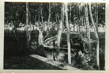 PHOTO ANCIENNE - VINTAGE SNAPSHOT - VOITURE DÉCAPOTABLE CAMPING FORÊT - OLD CAR