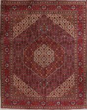 Traditional Hand-Knotted Kashmar Geometric Oriental Area Rug Wool Carpet 10'x12'