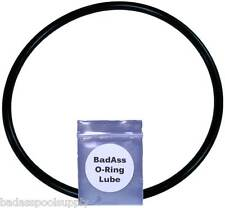 Pentair / Sta-Rite U9-229, Dura Glass Pump Trap Lid O-Ring with Lube