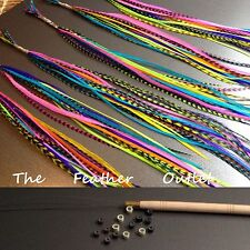 Feathers Hair Extensions Kit Lot 20 Grizzly Solid Bright Real NEON RAINBOW KIT
