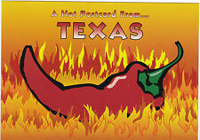 "*Postcard-""A Hot Postcard From ...TEXAS"""
