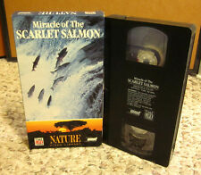 MIRACLE OF SCARLET SALMON sockeye Hell's Gate Canyon VHS documentary BC nature