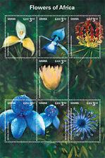 Ghana-2014-Flowers-Flowers of Africa
