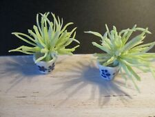 2 DOLLS HOUSE MINIATURE PLANTS IN DECORATED POTS