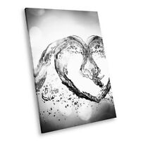 AB230 Black White Abstract Portrait Canvas Picture Print Wall Art Water Heart