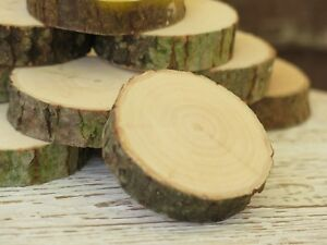 50-200 Wood Tree Slices 2-10cm Rustic Faux Fireplace Panel Craft LOCAL logs eco