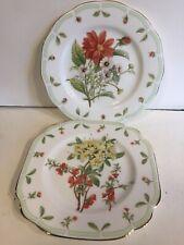 Royal Albert Botanic Teas Salad/Dessert Plates - Set of 2 - MINT