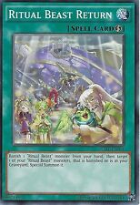 YU-GI-OH CARD: RITUAL BEAST RETURN - RATE-EN064