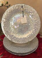 AKCAM Iridescent SILVER Glass DINNER Plates (SET OF 4)