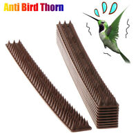 Pigeons Cat Deterrent Tool Anti Bird Thorn Repellent Nail Fence Wall Spike