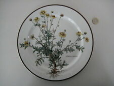 VILLEROY & BOCH LARGE DINNER SERVICE PLATE BOTANICA DESIGN ANTHEMIS TINCTORIA