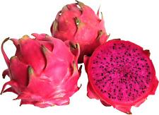 Dragon Fruit-Red Flesh Verity,50 Seeds.(Pitaya)-Hylocereus Costaricensis-Rare!