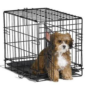 Midwest Homes for Pets Midwest 1518 iCrate Single-Door Pet Crate 18-By-12-By-14-