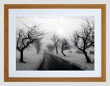 NATURE LANDSCAPE BLACK WHITE SNOW WINTER TREE BLACK FRAMED ART PRINT B12X4066