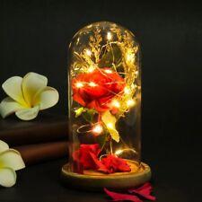 Enchanted Forever Rose Flower In Glass LED Light Wedding Festival Decor