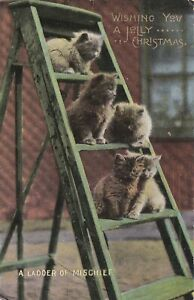 ANPC011) PC Wishing you a Jolly Christmas from cats on a ladder of mischief, use