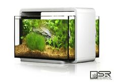 Nano/Desktop Aquarium Kit 6.6 Gallon All Glass LED Lighting SR Aquaristik