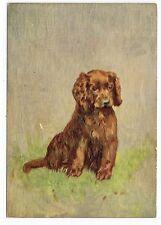 SUSSEX SPANIEL 1930'S DE RESZKE OUR PUPPIES DOG ART POSTCARD CIGARETTE CARD