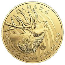 1 oz Gold Hirsch 2017 - Call of the Wild Kanada - 15 Euro Rabatt bei 3 Stück