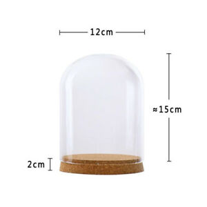 Regular clear glass cloche dome cover landscape terrarium container with
