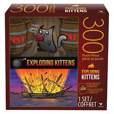 300 pc Exploding Kittens Puzzle   Brand New   Free Shipping