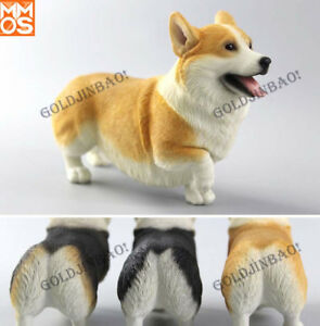 1/6 Scale Corgi Model Doll Accessories Pet Dog Statue Car decoration Display New