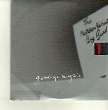 (DE155) The Nathan Herbert Big Band, Goodbye Swingtime - 2003 DJ CD