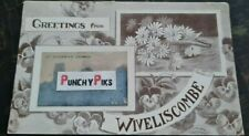 More details for 1907 greetings from wiveliscombe, somerset