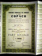 Copaco  ,Commerciale des Panneaux share certificate  Belgium 1964