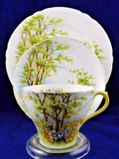 SHELLEY DAFFODIL TIME 13370 TEACUP & SAUCER TRIO