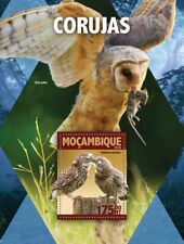 Mozambique 2016 MNH Owls Barn Little Owl 1v S/S Birds Stamps