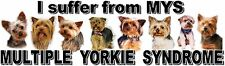 """""""I Suffer from  MULTIPLE  YORKIE  SYNDROME"""" Dog Car Sticker by Starprint"""