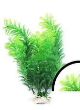 plante montante