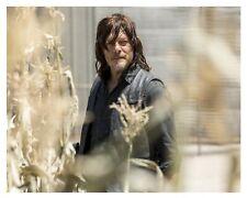 "*(( NORMAN REEDUS)) ""Daryl Dixon"" * * THE WALKING DEAD * (8x10) Glossy Photo*b*"