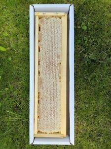 Pure Natural Raw Honey Comb 1kg (DIRECT FROM THE HIVE) Harvest 2020