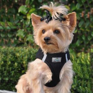 American River Black Dog Harness Ultra Choke-Free Mesh  -  XXS-3XL