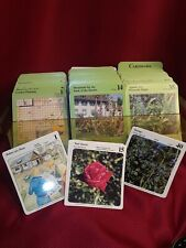 New listing Plant Growing Guide My Green Garden Card Set & Case Vintage 1987 herbs roses nut
