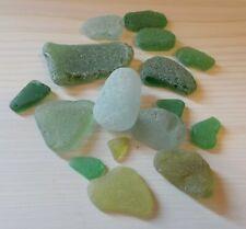 Seaglass - varied  green hues 16 pieces