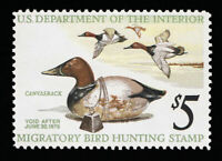 SCOTT # RW42  - ONE 1975 FEDERAL DUCK STAMP  - UNUSED - OG - NH - MINT