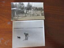 Vintage Beach Prints Negatives 1940s Sunbathing Swimwear Fashion Lot of 16 #9000