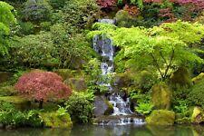 VLIES Fototapete-WASSERFALL-(3033V)-Wald Natur Fluss Japanische-Garten Bäume XXL