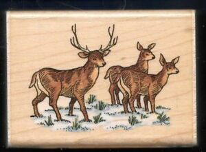 WHITETAIL DEER Buck Does SNOW HOLIDAY 1996 STAMPENDOUS! H110 WINTER RUBBER STAMP