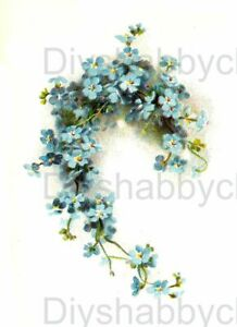 Waterslide Decal Vintage Image Transfer Little Blue flowers Upcycle Shabby Chic