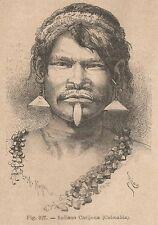 A5680 Colombia - Indiano Carijona - Xilografia - Stampa Antica 1895 - Engraving