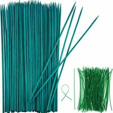 50Pack Plant Stake Support 15.9inch Garden Stakes For Amaryllis Orchid Lily Rose