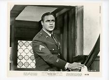 BEDTIME STORY Original Movie Still 8x10 Marlon Brando 1964 5021