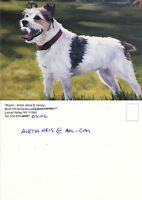 ROSIE A DOG FROM A PAINTING BY ALETA B HEISIG UNUSED COLOUR POSTCARD